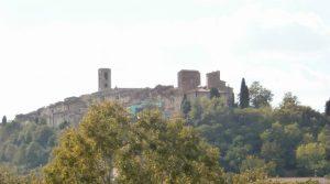 C 145 panorama 1
